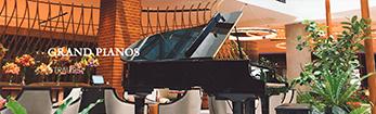 天津钢琴专卖店